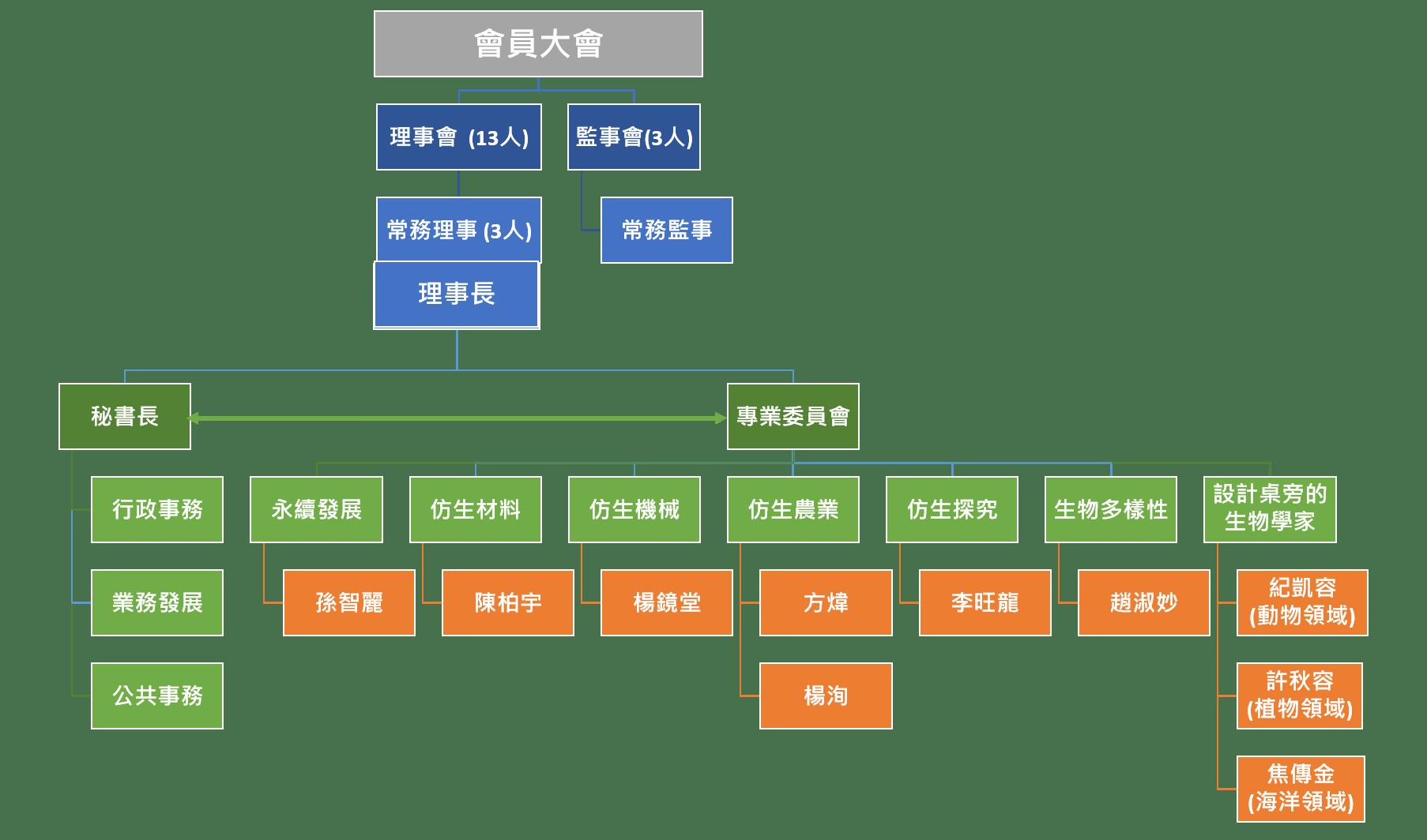 協會組織架構