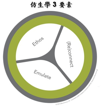 Biomimicry 3 elements
